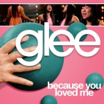glee because you loved me cover