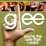 glee you're the one that i want cover