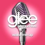 glee wake me up cover