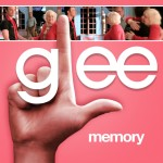 glee memory cover